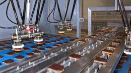 Bis zu 390 Produkte pro Minute kann der Delfi-Feedplacer aufnehmen und in die Zufuhrkette des Trayloaders platzieren.