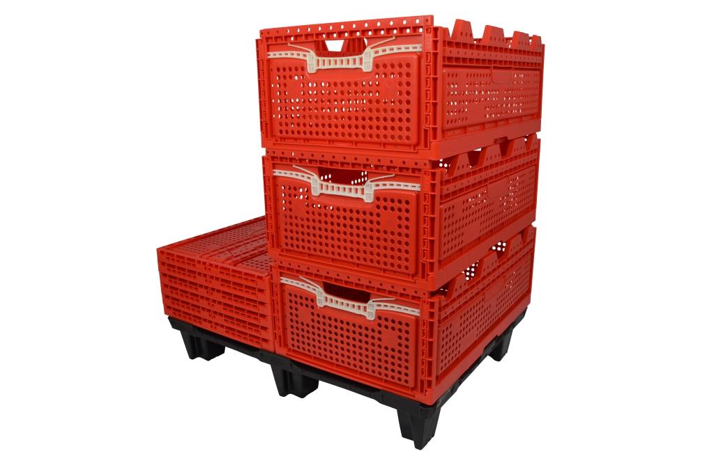 Der faltbare Behälter RL6424 (595 x 398 x 240 mm) ist ideal für Landwirtschaft und im Handel.