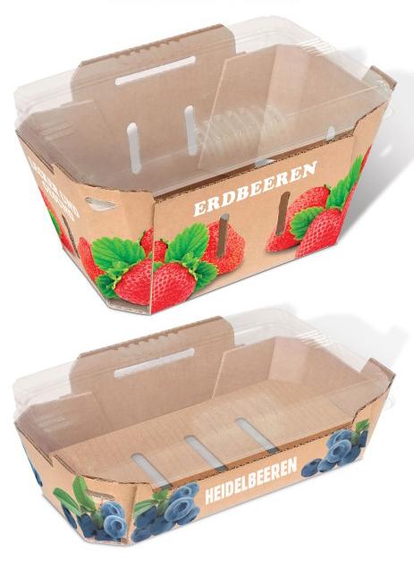 SoFruPak Kartonverpackungen