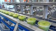 Das Erfolgsprodukt von Frutas Montosa ist die Guacamole. (Bild: Sealpac)