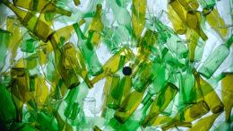 Glasflaschen (Bild: Josep Curto/shutterstock.com)