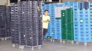 Etwa 400.000 schwarze, blaue und grüne Transportboxen, starr oder faltbar, mit und ohne Deckel, gemischt auf den Paletten, müssen täglich sicher erkannt werden. (Bild: broesele)