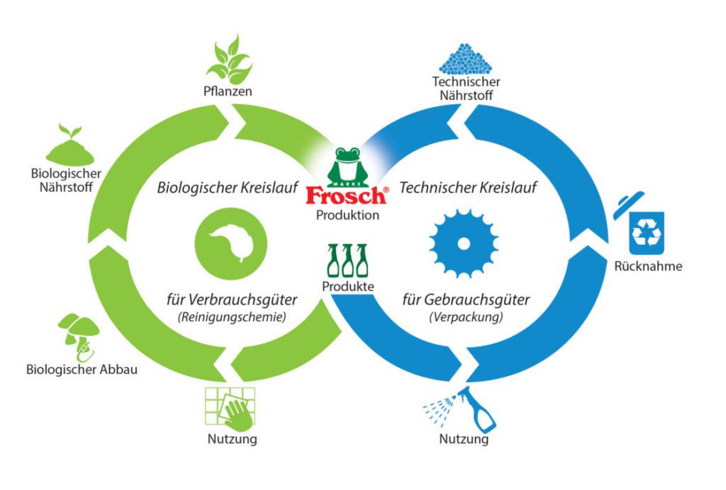 Denken in Kreisläufen: Die Recyclat-Initiative entwickelt ihre Verpackungen nach dem Cradle-to-Cradle™-Prinzip. Dabei werden die Reiniger im biologischen, die Verpackungen im technischen Kreislauf immer wieder verwendet. (Grafik: Werner & Mertz)