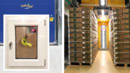Softrip-Reifetechnologie von Frigotec für Banenen (Bild: Fruit Logistica)