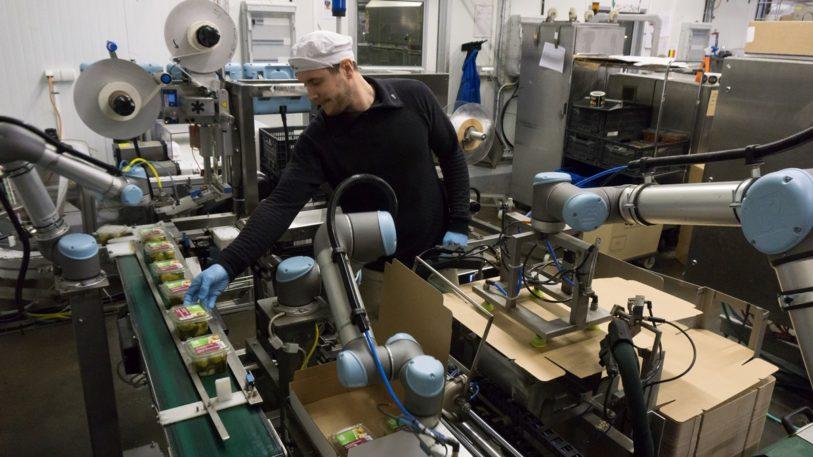 Durch den Roboter-Einsatz konnte Atria Scandinavia den Materialverbrauch deutlich senken. Heute fallen 25 Prozent weniger Kartonabfälle bei dem Hersteller für Gourmetprodukte an. (Bild: Universal Robots)