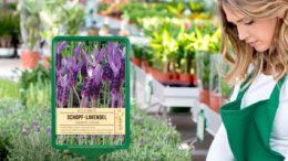 Zunehmend finden sich Sorten- und Aktionsschilder oder auch großformatige Hinweisschilder auf den Verkaufsflächen.