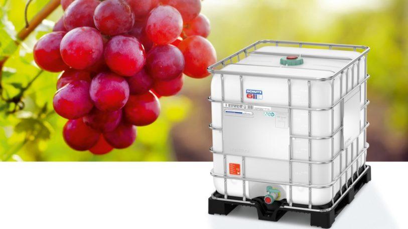 Schuetz Wein-Reifungs-IBC