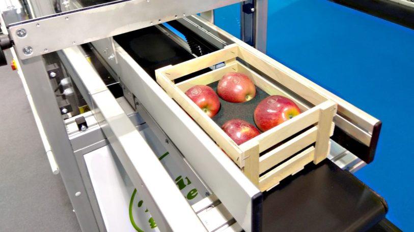 Bluhm Systeme: Obst direkt auf der Schale kennzeichnen (Bild: Ulrich Klose)