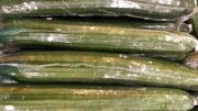 Salatgurken in Schrumpfverpackungen (Bild: phela77/shutterstock .com)