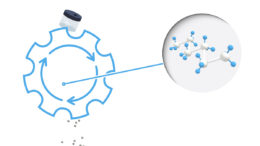 Zertifizierte zirkuläre Polymere ermöglichen es, den Wertstoffkreislauf zu schließen und Plastikabfall sinnvoll wiederzuverwenden. (Bild: Walki)