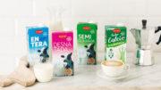 In Spanien hat sich ALDI, einer der führenden Discounter in Europa, für die aseptische Kartonpackung combibloc EcoPlus 1.000ml von SIG entschieden, um die UHT-Milch der Marke Milsani in einer nachhaltigen Verpackungslösung anzubieten, die bis zu 28 % weniger CO2 benötigt – verglichen zu einer herkömmlichen, formatgleichen 1-Liter Kartonpackung von SIG. (Bild: ALDI)