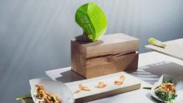Metsä Board bekommt das dritte Jahr in Folge den EcoVadis-Gold-Status für Nachhaltigkeit. (Bild: Metsä Group)