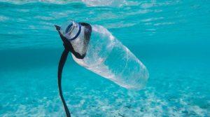 Eine Plastikflasche treibt als Müll im Meer
