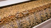 Polygonscanner im Einsatz beim Sortieren von Lebensmitteln. (Bild: Adobe Stock/Sunshine Seeds)