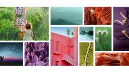 Für die Milliken ColorCollection 2021 hat sich das Unternehmen von natürlichen Designs inspirieren lassen.