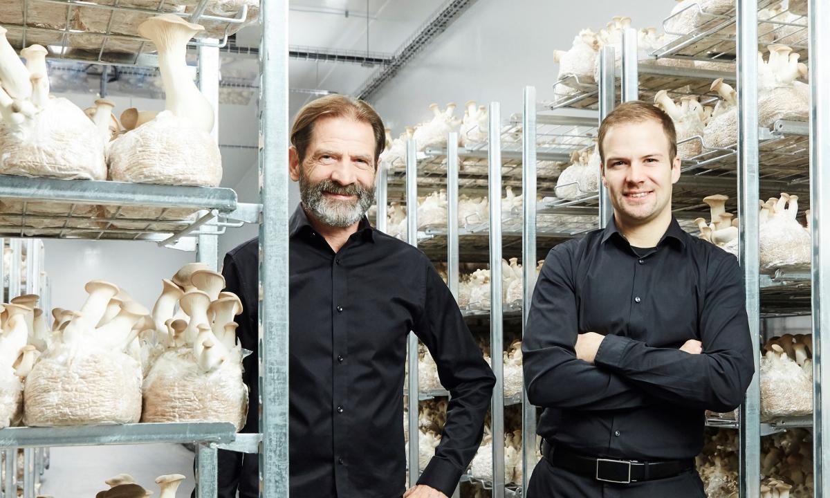 Hermann und Thomas Neuburger in ihrer hauseigenen Pilzzucht.