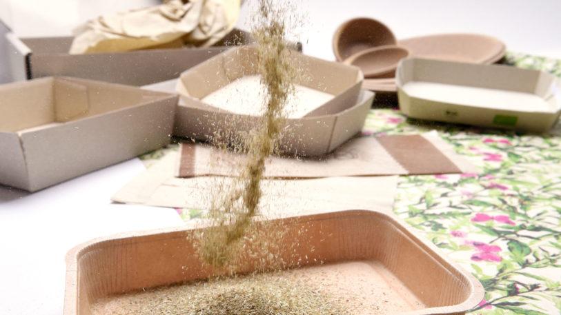 Verschiedene Trays aus Graspapier
