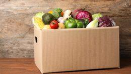 Cortec bietet mit EcoShield eine recycelbare Feuchtigkeitsbarrierebeschichtung für die Lebensmittelverpackungsindustrie.