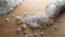 Pellets aus Stärke zur Herstellung von Biokunststoff