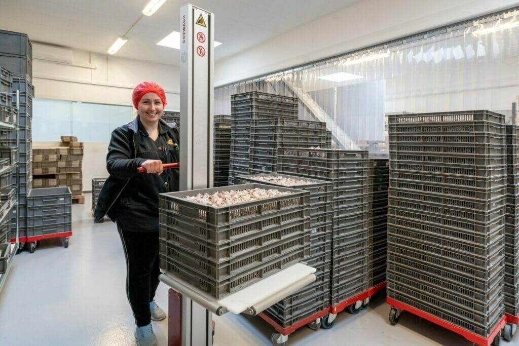 Hovmand Kistenheber in der Lebensmittelproduktion