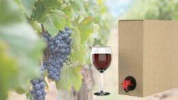 Eine Bag-in-Box-Weinschachtel neben einem Weinglas und einem Rebstock